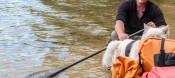 Canoe Paddles: Algonquin 1 Piece Bent Shaft by Werner Paddles - Image 3484