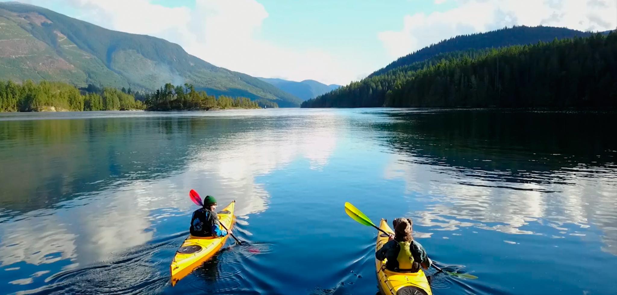 Kayak Paddles: Camano by Werner Paddles - Image 2583