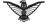 Nova Craft Logo